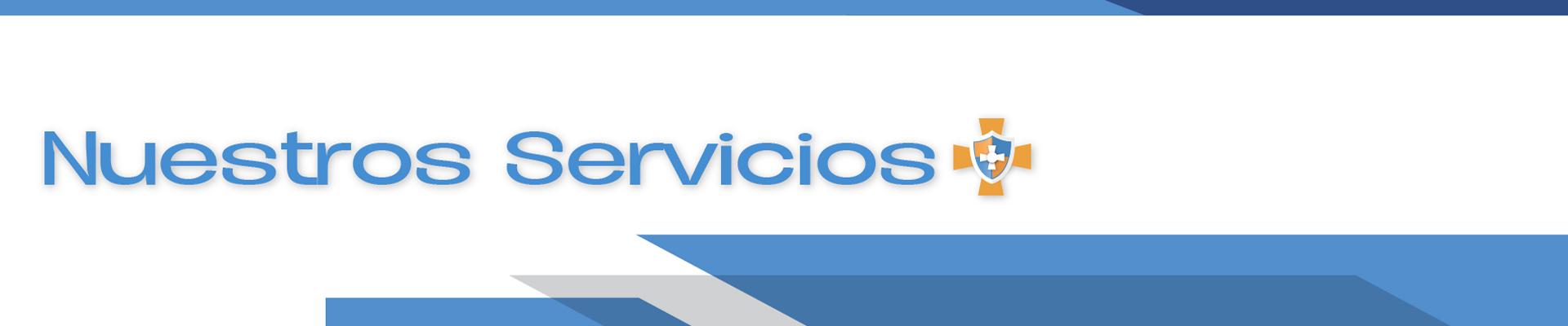 Nuestros servicios maseguro
